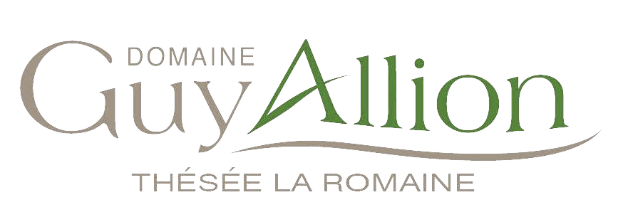 Domaine Guy Allion